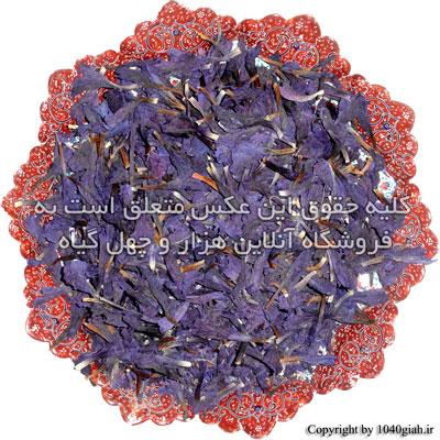 عکس گل گاوزبان درجه یک