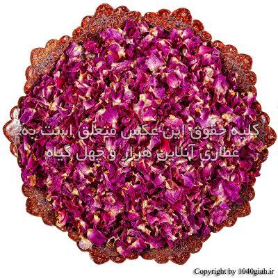 عکس گلبرگ گل سرخ