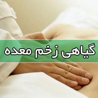 زخم معده و درمان آن به صورت گیاهی