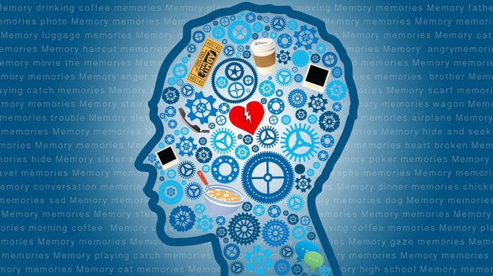 افزایش حافظه به کمک گیاهان دارویی