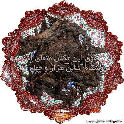 عکس سنبل الطیب
