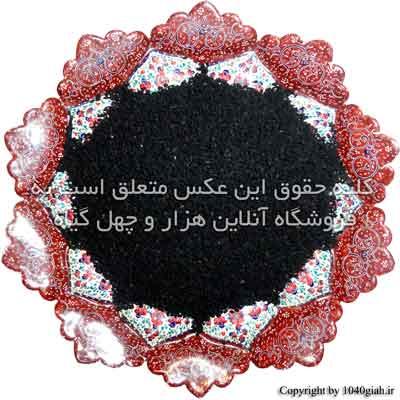 عکس سیاه دانه