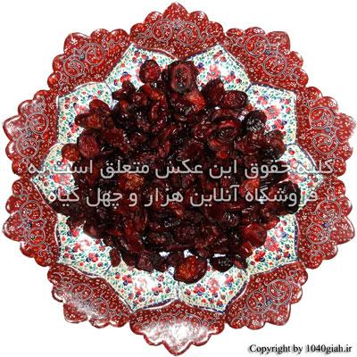 عکس میوه کرن بری خشک