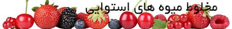 مخلوط میوه های استوایی